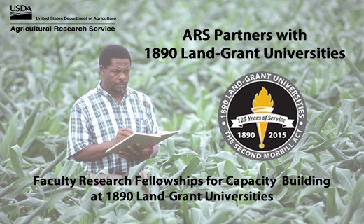 Agricultural Research Service is committed to enhancing the agricultural research capacity of the 1890s Land-Grant Universities (LGUs) by partnering with them through the award of research fellowships.