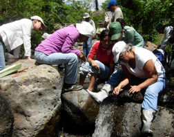 Dr. Solis and students collecting aquatic moth caterpillars