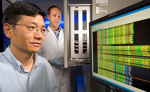 Genome sequencing plays a role in helping to understand the complexity of plant species. Yong Gu (L) and Devin Coleman-Derr (R) generate DNA sequences to identify breadmaking-quality genes in wheat.