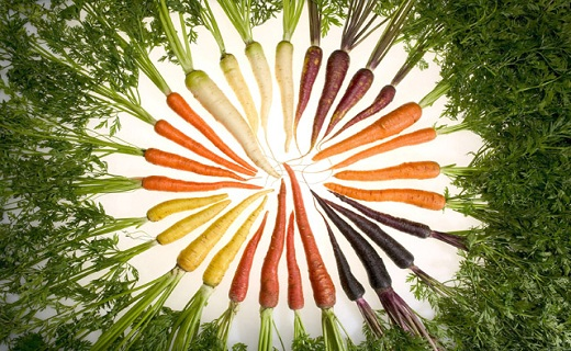 mixed carrots in wheel formation