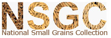 National Small Grains Collection