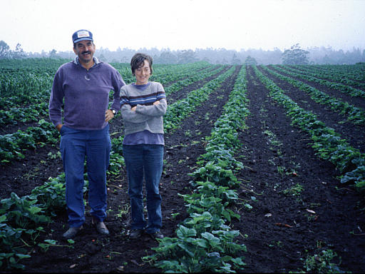 Man and woman on farm