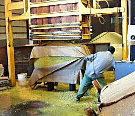 hops being pressed into a bale