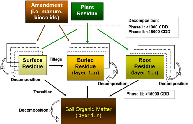 Schematic of carbon flow in the CQESTR model