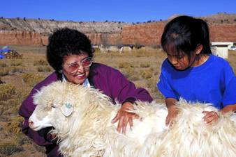 Navajo women with a churro sheep.