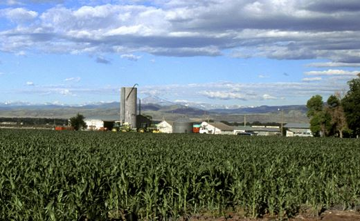 <h3> NCGRP is located in Fort Collins at the base of Colorado's Front Range. <br> <br> The semi-arid and temperate climate is ideal for long-term seed storage. </br> </br> </h3>