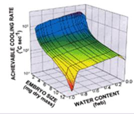Relationship between embryo size, water content, and achievable cooling rate.