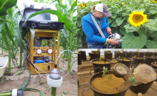 In the field or greenhouse we use many instruments to measure crop response to limited irrigation