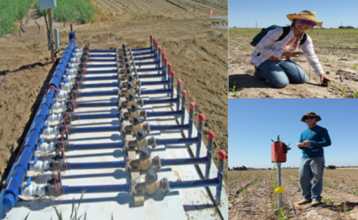 We use drip lines to accurately apply water for our treatments. This is measured for all the treatments at the manifolds (left) and tracked in soil moisture measurements, TDR (upper right) and neutron probe (lower right).