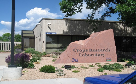 Crops Research Laboratory for Sugarbeet Research.