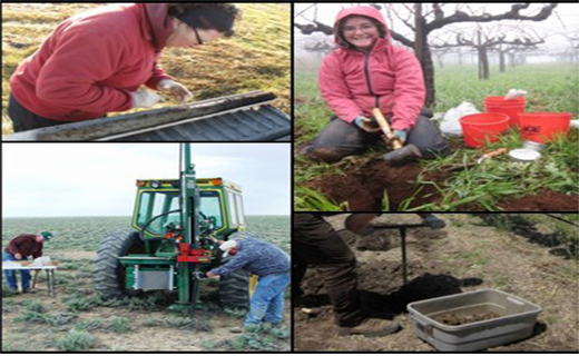 Evaluate status and direction of change in soil carbon for typical and alternative agricultural systems.