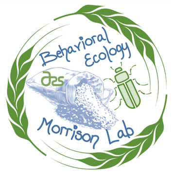 /ARSUserFiles/30200520/rm_lab/cropped-final_morrison_logo_w_white_background.png