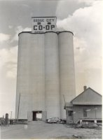 Dodge City elevator: 'A modern terminal-type country elevator with concrete, silo-type tanks having a capacity of 250,000 bushels.'