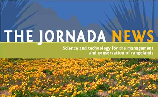 Jornada Newletter: What's New with Long Term Ecological Research. 