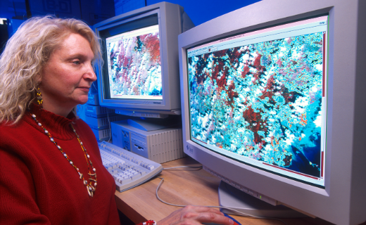 Pamela Phillips inspects satellite data for screwworm trap placement in Panama