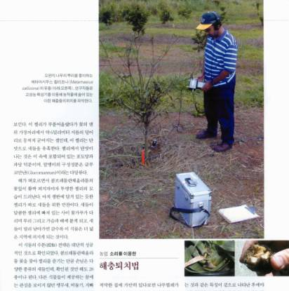 Everett Foreman acoustically surveying for insects with AED2000