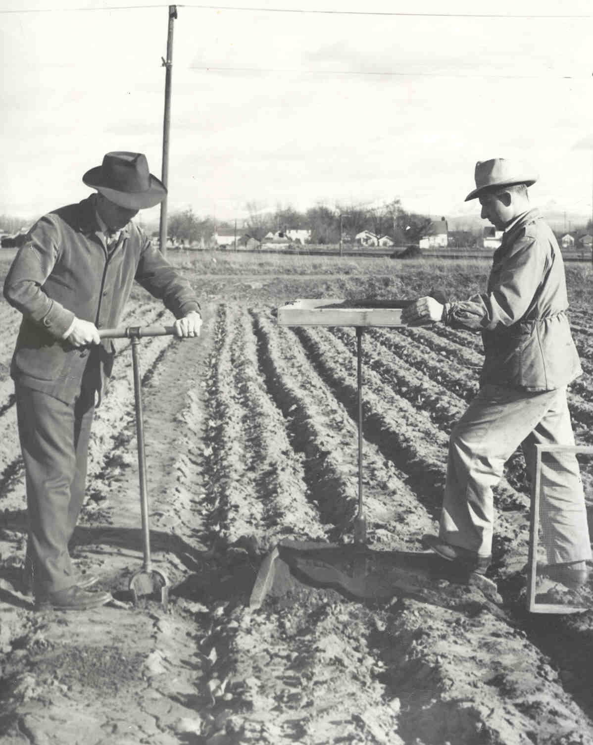 This is how researchers sampled for soil insects in 1951--Photo courtesy of James Fisher
