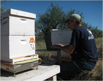 /ARSUserFiles/48464/William Meikle with hive scale and computer.jpg