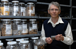 Mark Widrlechner with ash seed collection in cold room.