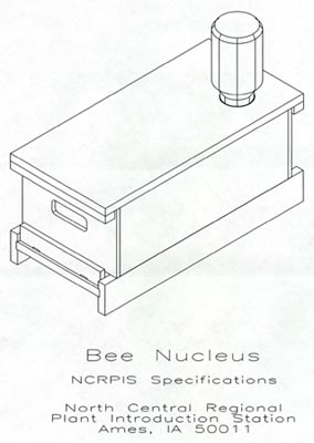 Honey Bee Nucleus
