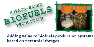 forage based biofuels production
