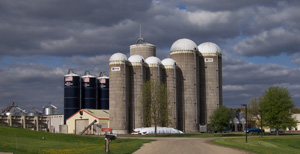 Image of the farm as seen while driving up the driveway.