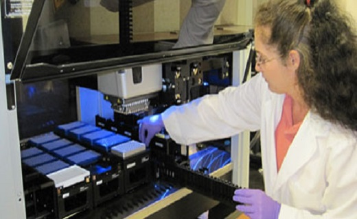 Loading rice DNA samples into high-through-put analyzer.