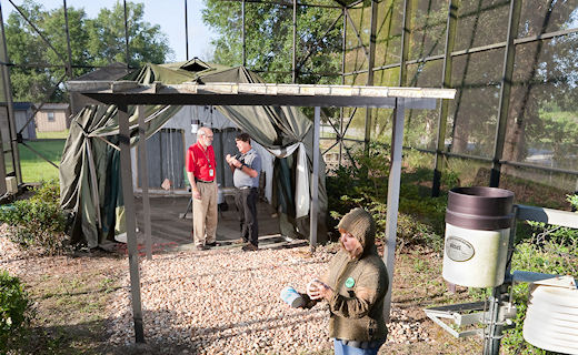 CMAVE scientists set up a tent previously used in Iraq to test compounds that may protect occupants from mosquitoes and stable flies.