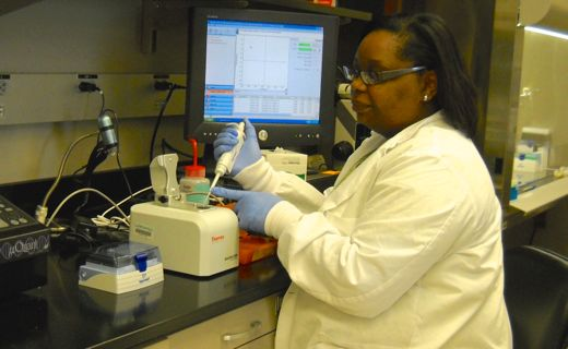 Carol Morris performs quality control test on DNA sample before testing with molecular markers