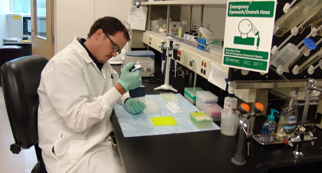 GBRU Collaborator, Cal Youngblood, inspecting a multichannel pipette