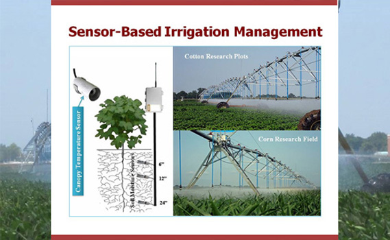 The development of water management technologies aid in more efficient use of irrigation water.