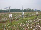 Sensors in cotton research plots
