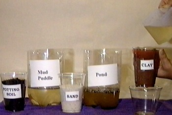 Image of varied water and soil samples as described in experiment
