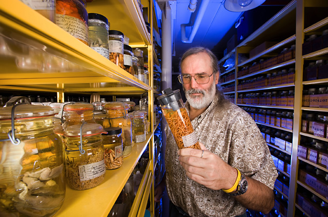 Eric Hoberg, chief curator of the U.S. National Parasite Collection, photo by Peggy Greb