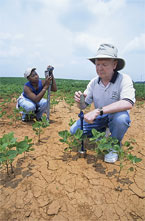 ARS Scientists test soil moisture, photo by Stephen Ausmus