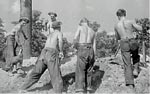 Photo: Civilian Conservation Corps (CCC) Workers, Beltsville Agricultural Research Center