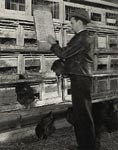 Photo: Worker recording data on nutrition at poultry cages,  Beltsville Agricultural Research Center, 1930s