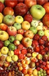 Photo: Apple varieties