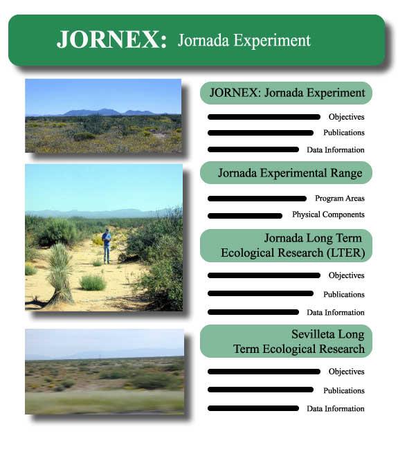 JORNEX: Jornada Experiment