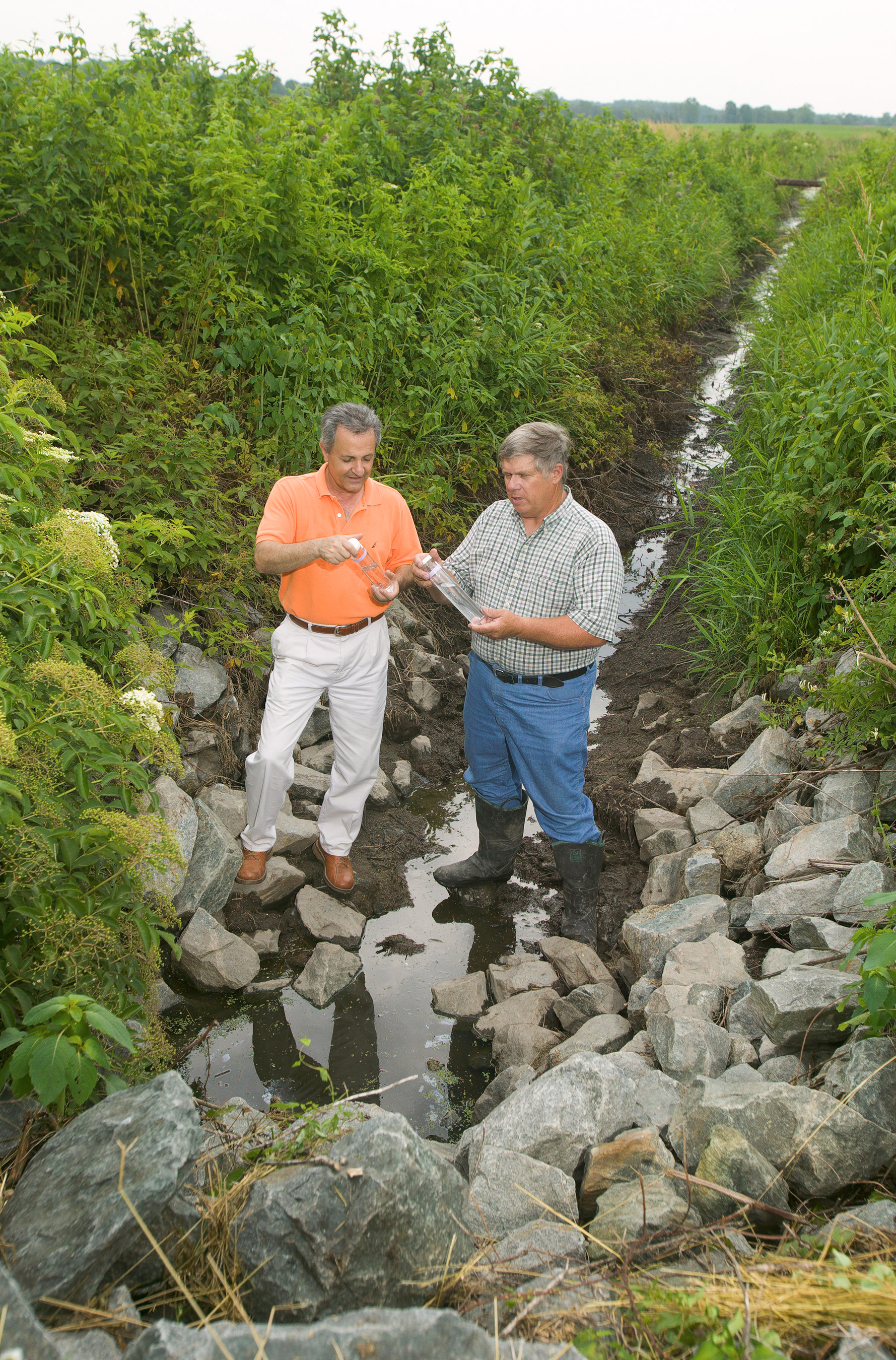 Water quality assessment, Photo by Agricultural Research magazine