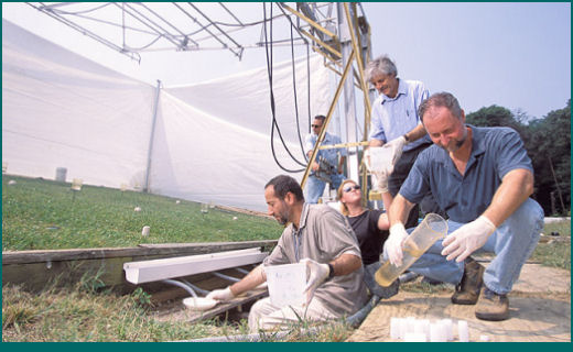 EMFSL conducts research to understand how pathogens are disseminated on farms, in the environment, and to food products, and to develop methods to detect, characterize, and mitigate contamination to prevent foodborne illnesses. <br><strong><font color=#006666>Click on the photos to read more.</font></strong>