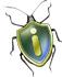infobug logo