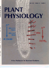 pict of plant physiology cover