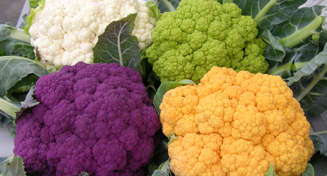 Anthocyanins are responsible for the color of many flowers, fruits, and vegetables