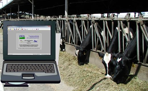 Software tools are developed, evaluated and used to find strategies for improving the economic and environmental sustainability of farming systems