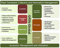 plant genebank collection and information management