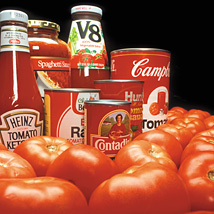 Tomato products and fresh tomatoes