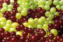 Grapes: Link to photo information