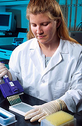Technician Shannon Campion conducts the ARS-developed ELISA test for Trichinella