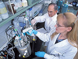 Photo: Chemist and technician convert vegetable oil into antifungal agents and other value-added bioproducts. Link to photo information